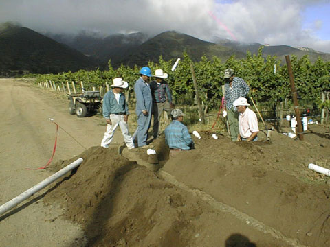 Irrigation Training Workshop, California