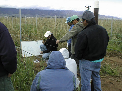 Irrigation Troubleshooting Training, California